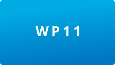 Image WP11