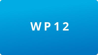 Image WP12